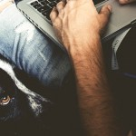 Lessons I've Learned from My Dog that Apply to Affiliate Marketing