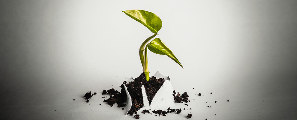 14 Steps To Grow Your Affiliate Program - JEBCommerce